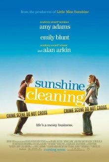 Чистка до блеска / Sunshine Cleaning (2008)