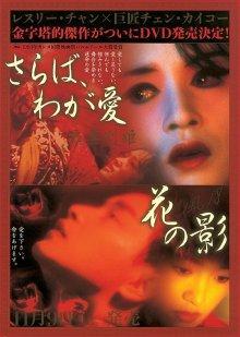 Прощай, моя наложница / Ba wang bie ji (1992)