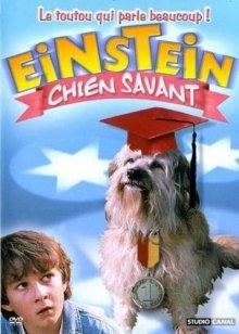 Завтрак с Эйнштейном / Breakfast with Einstein (1998)