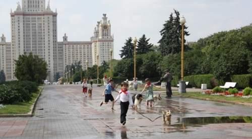 Собачий рай (2013) трейлер фильма на русском
