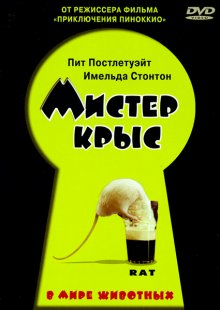 Мистер крыс / Rat (2000)