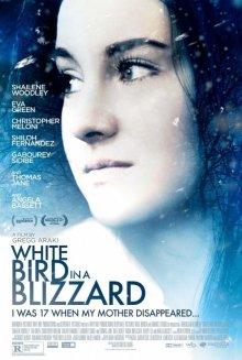 Белая птица в метели / White Bird in a Blizzard (2014)