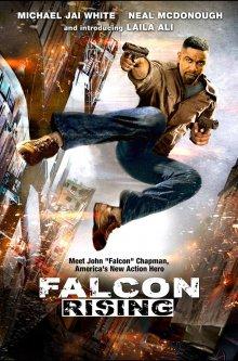 Восхождение Сокола / Falcon Rising (2014)